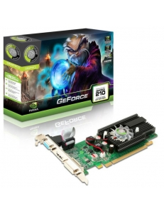 Point of View GeForce GT210 1Gb